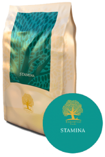 Essential_foods_hondenvoer_Stamina A