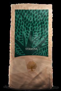 1075_STAMINA_Packshot_Bag_12kg_web_No Background